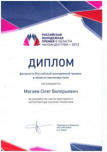 Magaev nano 2013